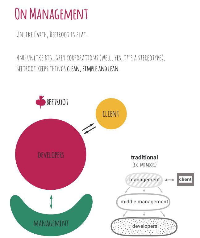 Модель менеджмента компании Beetroot
