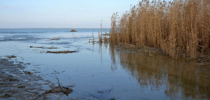 Стан питної води на Одещині. Що можна змінити на краще?